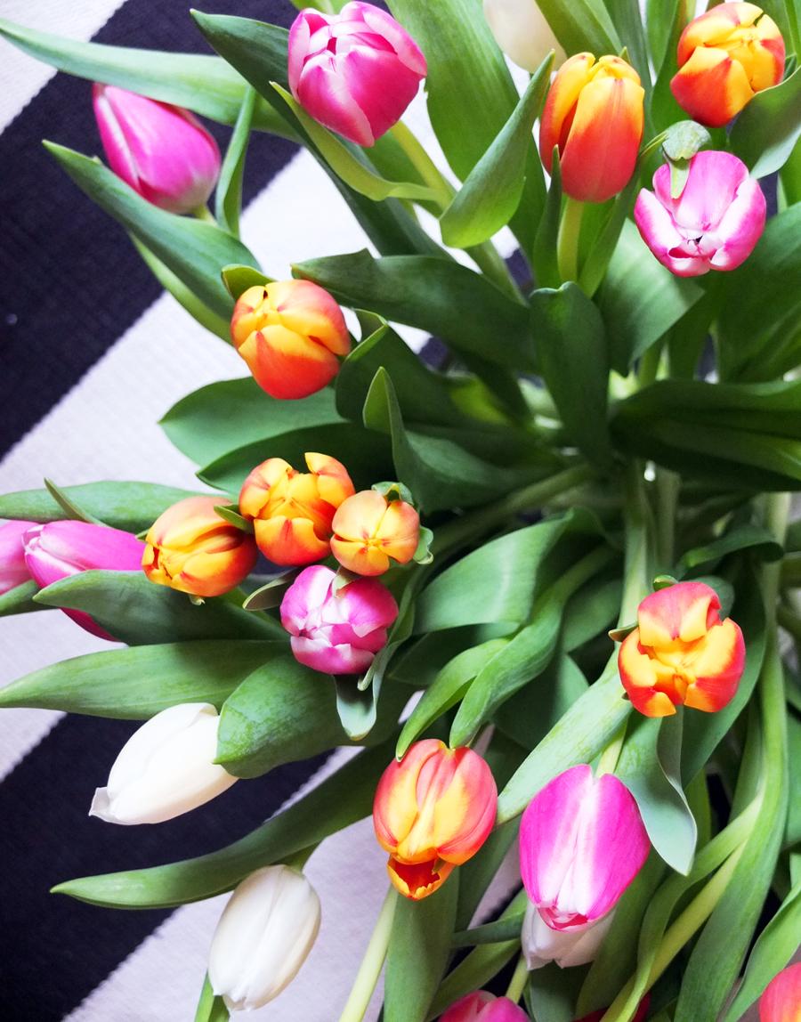 Frühlingserwachen3