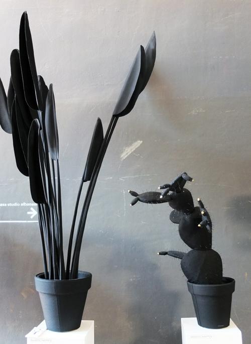 Pflegeleichte Topfpflanzen von Wandschappen.